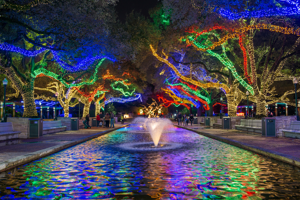 Houston Zoo - TXU Energy Presents Zoo Lights :Zoo Lights